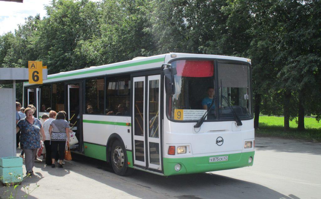автобусы лен области